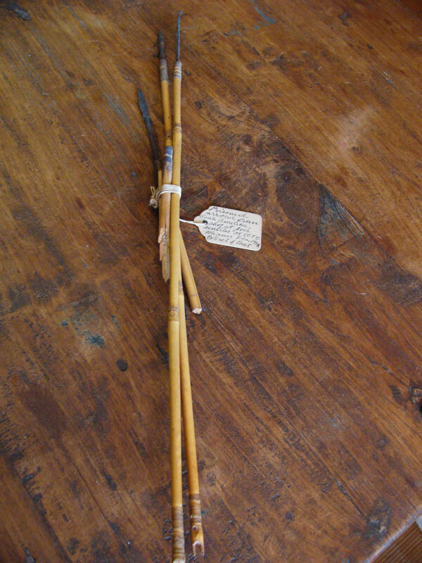 WWII Weapon Poison Arrows from South America War Peasant Fight Weapon 1943 RARE