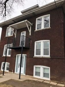 NEWLY RENOVATED 1 BEDROOM APT STEPS FROM OTTAWA ST. BALMORAL AVE