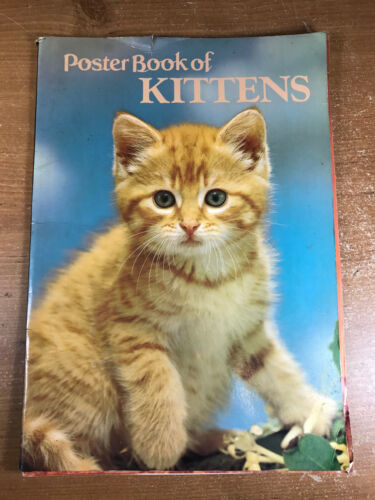 """Poster Book of Kittens 20+ Cat Posters 14.5"""" x 10"""" 1982 Vintage Cute!"""