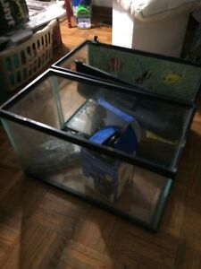 10 gallon fish tanks