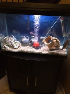 Fishtank with fish and Stand cabinet full of stuff