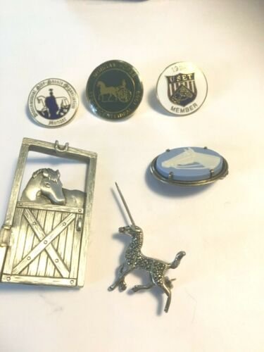 Equestrian Pins - 6: diamond chips ; commemorative (3), Pewter, sterling & blue