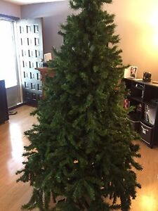CHRISTMAS TREE FOR SALE