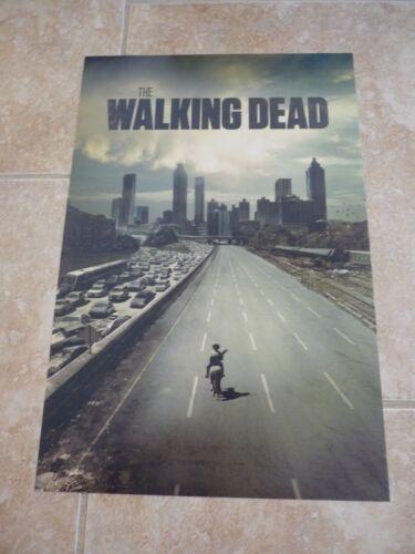 The Walking Dead Promo Color 12x18 Photo Picture--DAMAGE
