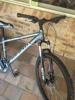 Mountain bike Avanti
