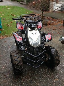 Atv buy or sell used or new atv in kelowna kijiji for Atv yamaha raptor 125cc