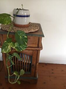 Cheap indoor plant
