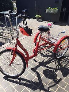 Trike New Lambton Newcastle Area Preview