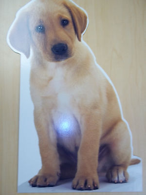 Vintage Giant Die-Cut Hallmark Labrador Retriever Card  - Pet Love Collection ()