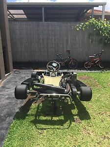 Rotax max go kart (nego) need gone asap Chester Hill Bankstown Area Preview