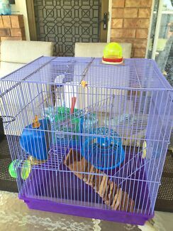 Mouse cage and accessories  Alexandra Hills Redland Area Preview