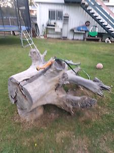 Free firewood Loganlea Logan Area Preview