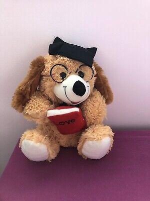 Grosses Kuscheltier Love School Teddybär Bär Schule Abschluss Stofftier Top zust