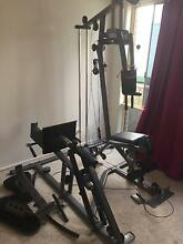 Expander Pro 300 gym set with leg press Newcastle West Newcastle Area Preview