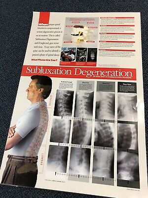 Chiropractic Subluxation Degeneration Poster