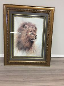 Lion Picture in Frame