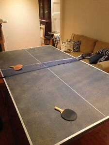Table tennis table with accessories Hampton Bayside Area Preview