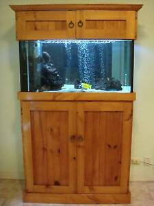 Fish Tank Marine Little Bay Eastern Suburbs Preview