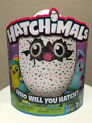 Hatchimals Pengualas Pink Teal Egg Brand New