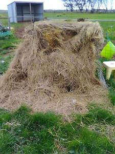 Hay for mulch Werribee Wyndham Area Preview