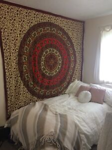 Looking for roommate near CNC, 15th Ave, pine centre, and bustop