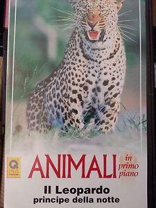 Lotto-2-videocassette-documentari-animali-natura