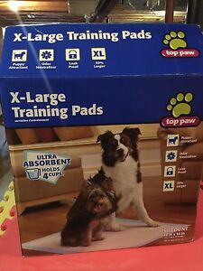 Box of Puppy Training Pads