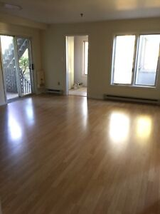 Spacious pet friendly 2bdrm Joe Howe condo! Dec 1! Won't last!