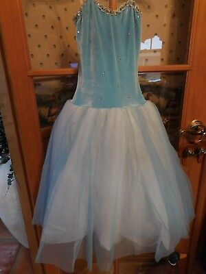Fairy Costume Deluxe Custom Made with Wings  Size 10-12 - Fairy Customes