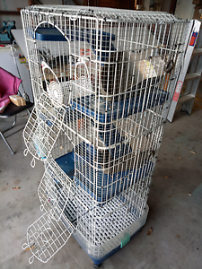 PET CAGE (rats) Toukley Wyong Area Preview