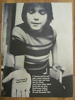David Cassidy, Full Page Vintage Pinup
