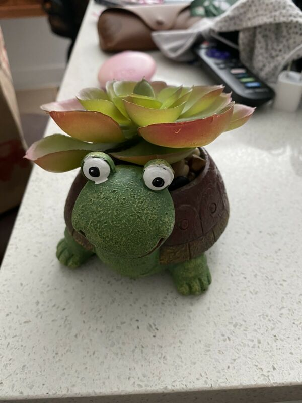 Plastic Turtle Planter With Fake Succulent And Filler Rocks