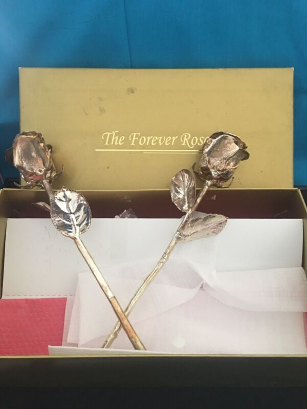 """Forever Rose Set Of Two 11"""" Sterling Silver Dipped Real Roses"""