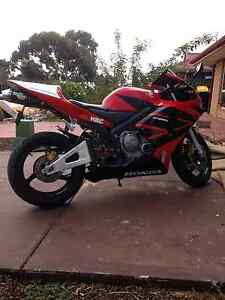 Cbr600rr 2004 sports bike for sale/swaps Northfield Port Adelaide Area Preview