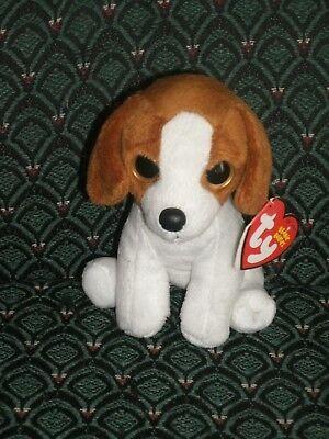 Ty Beanie Baby ~ BANJO  (Big Eyes) Beagle Dog  ~ MINT/MINT TAGS ~ RARE ~ 2013
