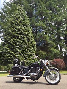 REDUCED!!! Honda Shadow 1100