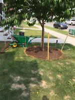 Beavers landscaping and lawn care