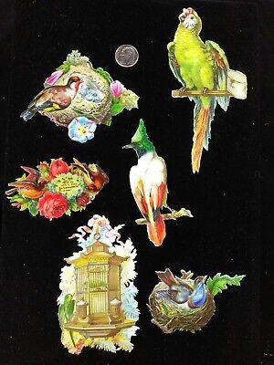 Vtg Victorian Die Cut Scrap-ca 1880's-1890's  Lot of 6 Birds Unique Bird Cage
