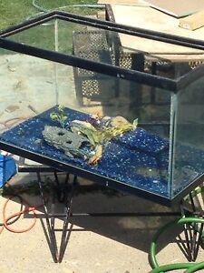 Larger fish aquarium, stand, double filter ++