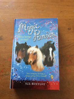 Magic Ponies Book