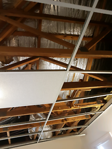 Insulated Ceiling Bats