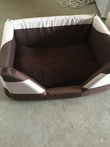 Dogs Beds (2) Ngunnawal Gungahlin Area Preview
