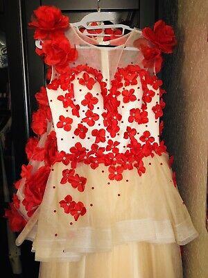 Wedding Pageant Princess Special Ocasion Custom Made Dress Worn Ones Amazing - Special Ocasion Dresses