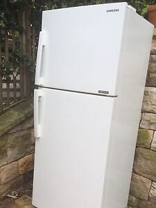 Samsung 393l fridge freezer North Curl Curl Manly Area Preview