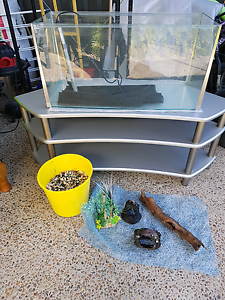 Fish tank and stand and accessories Meridan Plains Caloundra Area Preview