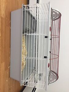 Living World Small Animal Cage with Water Bottle