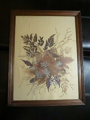DRIED PRESSED Foliage Botanical Collage Picture FRAMED ART 17x13 Oshibana Flower
