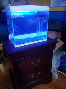 Small fish tank and stand and light