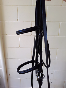 Kincade Padded Flash Bridle Brookfield Brisbane North West Preview