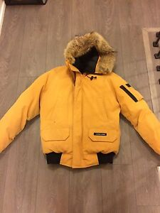 Dark yellow Canada goose Chilliwack bomber - men adult small
